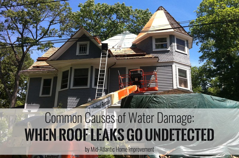 & Common Causes of Water Damage: When Roof Leaks Go Undetected